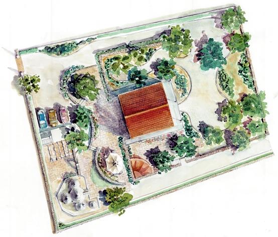 Progettazione giardini ulivi secolari piante e giardini for Progettazioni giardini